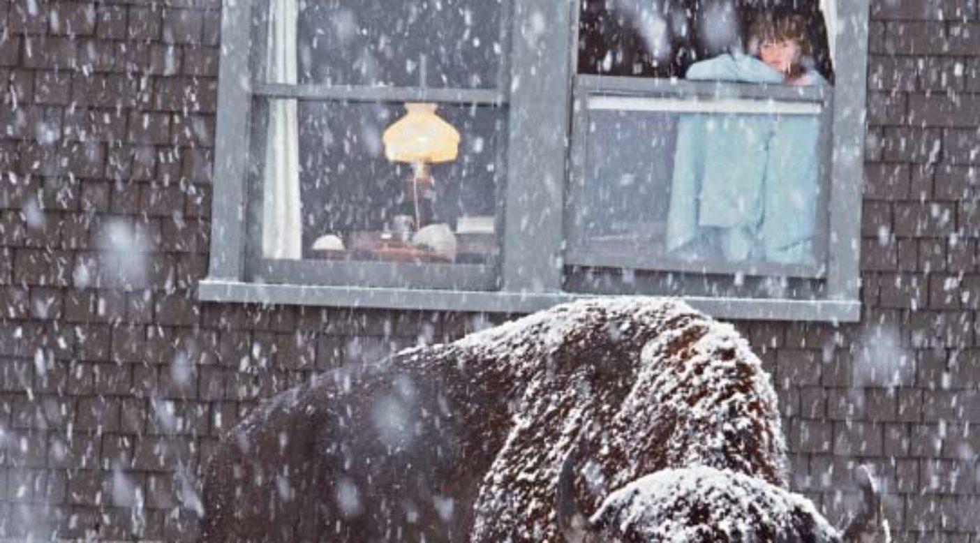 イエローストーンの家でくつろぐスカイ。Photo: Steven Fuller