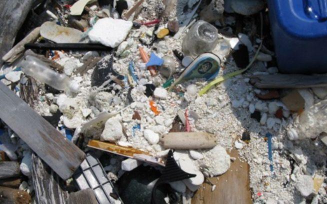 丈夫で長持ちするプラスチックも粉々に。写真:一般社団法人JEAN