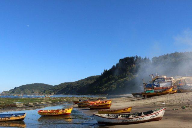 引き潮時に潮の香で満ちるチリのコチョルゲ。Photo: Bureo