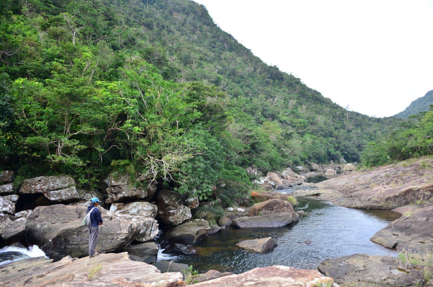原始の森を縫うように流れる浦内川は、巨人が運んだような大きな岩がゴロゴロと転がっている。写真:中根 淳一