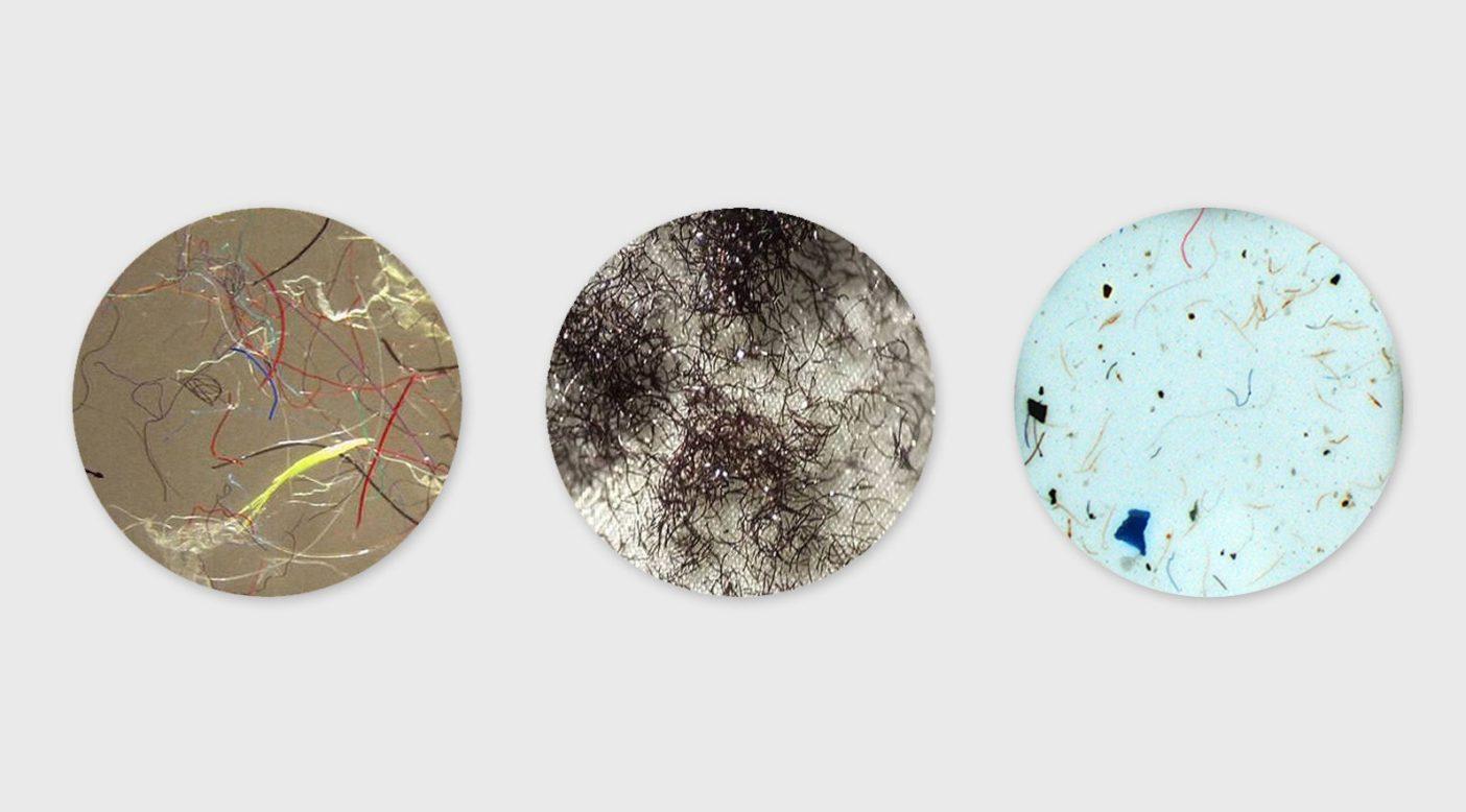 マイクロファイバーの顕微鏡写真。写真:カリフォルニア大学サンタバーバラ校、ブレン環境科学・経営スクール