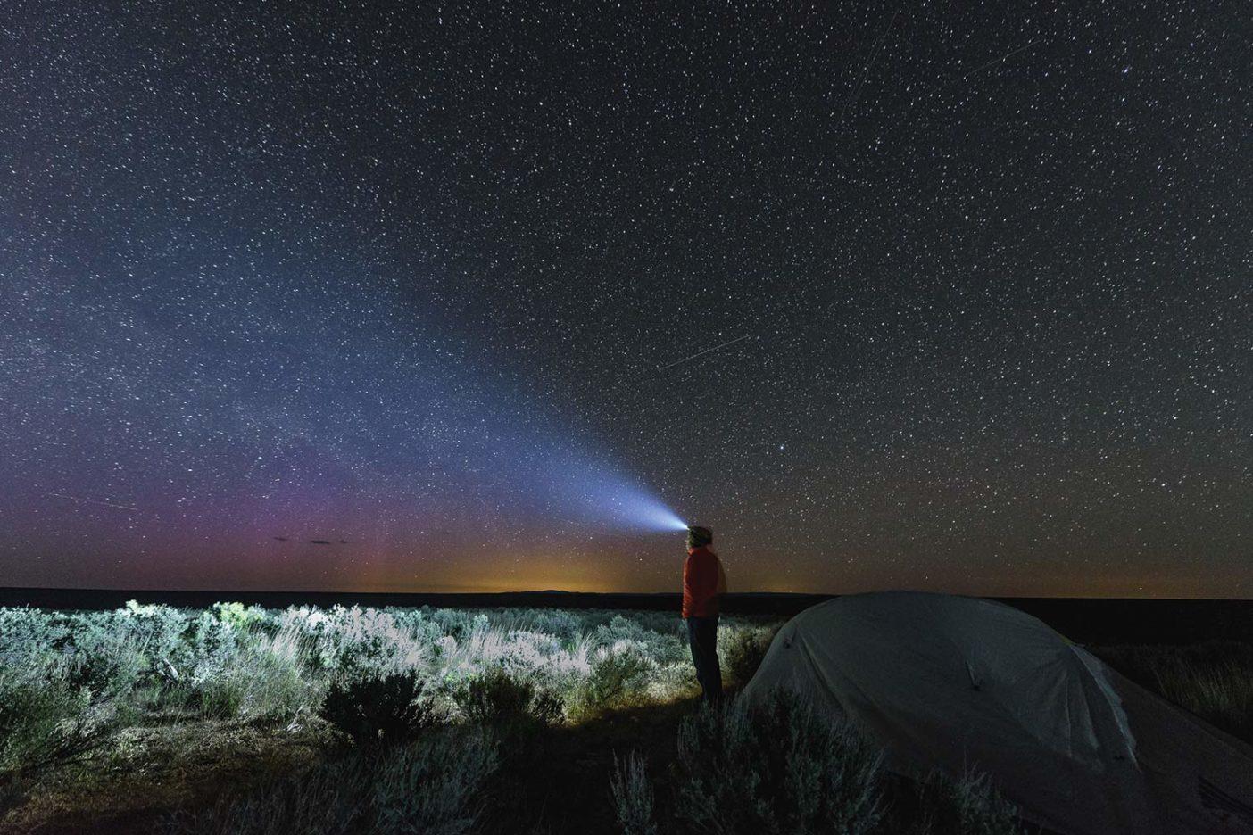 最後の暗闇を満喫するジェシー。Photo: Fredrik Marmsater