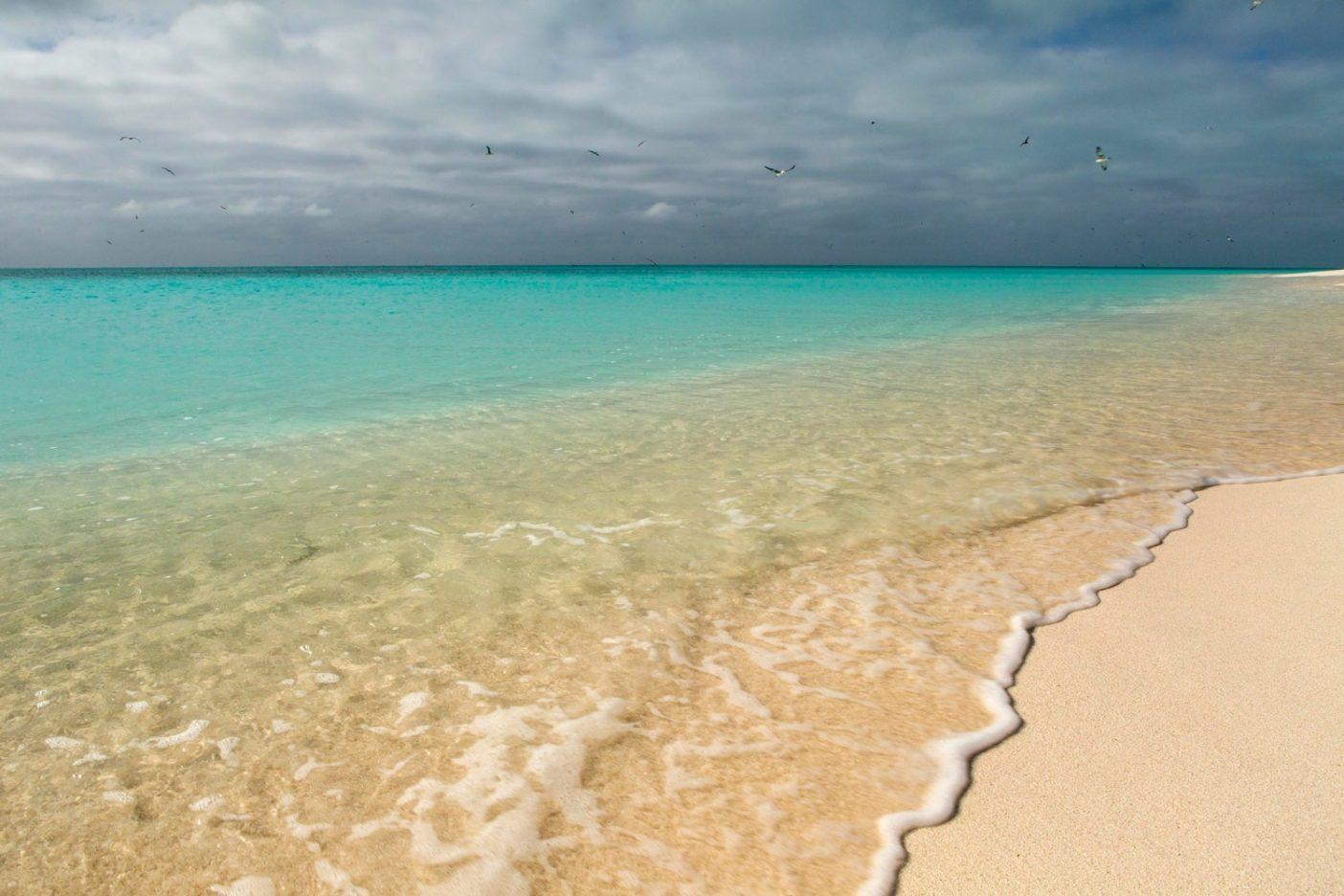 ハワイ諸島の北西部に位置するパパハナウモクアケア海洋国定記念物の保護された沿岸水は、すべての国立公園を合わせた地域を超える大きさだ。この地域は7千の海洋生物の生息地であり、その半分はハワイ諸島にのみ存在する。1,400万の海鳥が生息するこの地域はまたポリネシア文化の理解に重要な自然風景を提供する。Photo:  Ian Shive