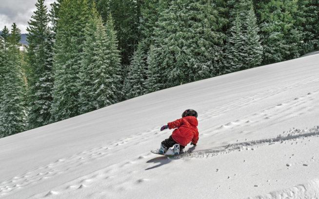 ちびっ子にパウダーを滑ることができるなら、何日滑ることができるでしょうか。その答えを探すマック・アンダーソン。コロラド州クレステッド・ビュート 写真:Jeff Cricco