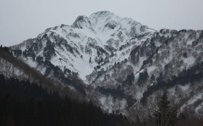 大源太キャニオンから仰ぐ大源太山西面と滑降ライン。全写真:松岡祥子