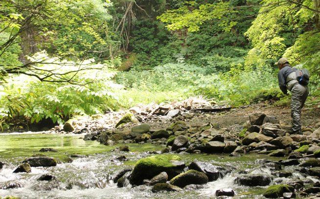 パッカブル・ウェーダーは履いていることを忘れさせるほど、軽快に釣りを楽しめる。 写真:森安正樹