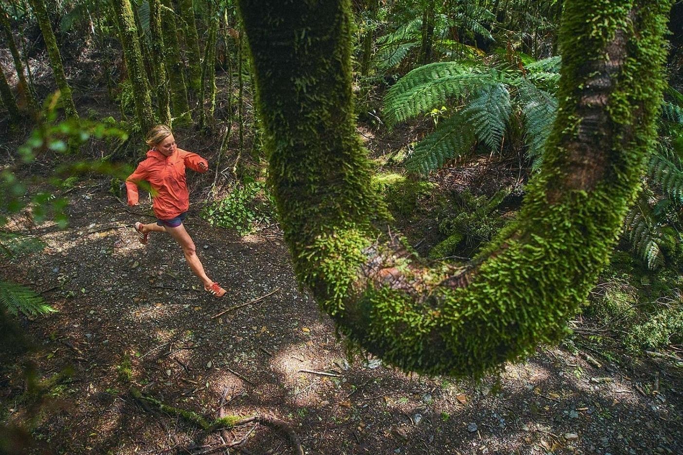 ターカインの原生地を巧みに 縫い進むミーガン・ブラウン。タスマニア  Photo:Mikey Schaefer