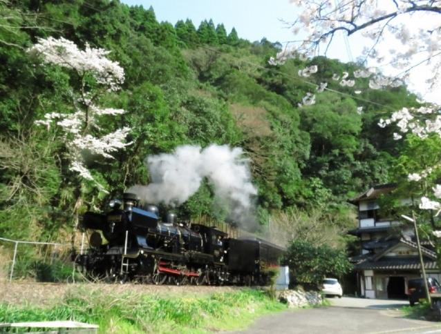 球磨川沿いを走るJR九州旅客鉄道の蒸気機関車、SL人吉。いまでは車窓からの景色に荒瀬ダムはない