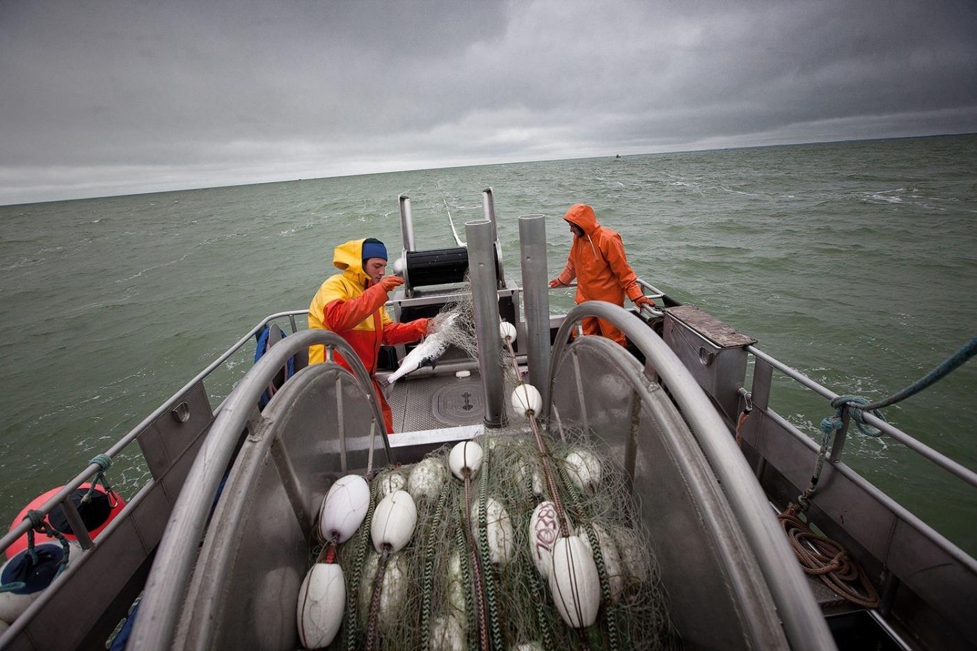 アラスカの商業漁師。Photo: Bob Waldrop