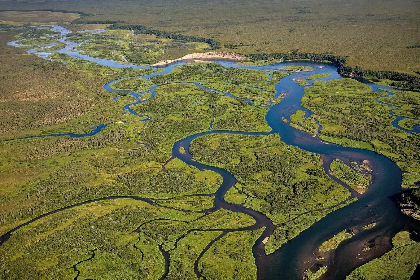 海まで約27キロ、アラナック川はブリストル湾を迂回し、クビチャック湾へと流れ出す。晴れた日にはベニザケの群れが数百メートル上から望める。アラスカ州。Photo: Ben Knight