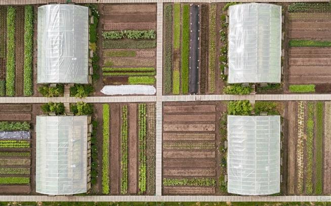 夏に空中撮影したパタゴニア公園のバイオインテンシブ菜園。30種以上の作物が味覚のオーケストラを成す。Photo: James Q Martin