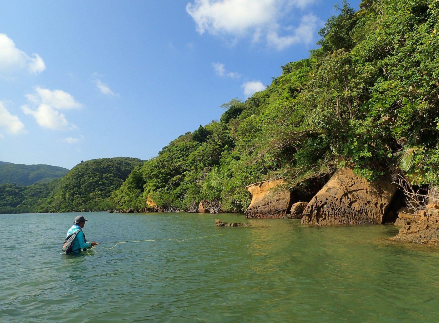 河口近くのマングローブエリア。時には腰うえまで浸かりながら岸際の物陰を丹念に探っていく  写真:中根淳一