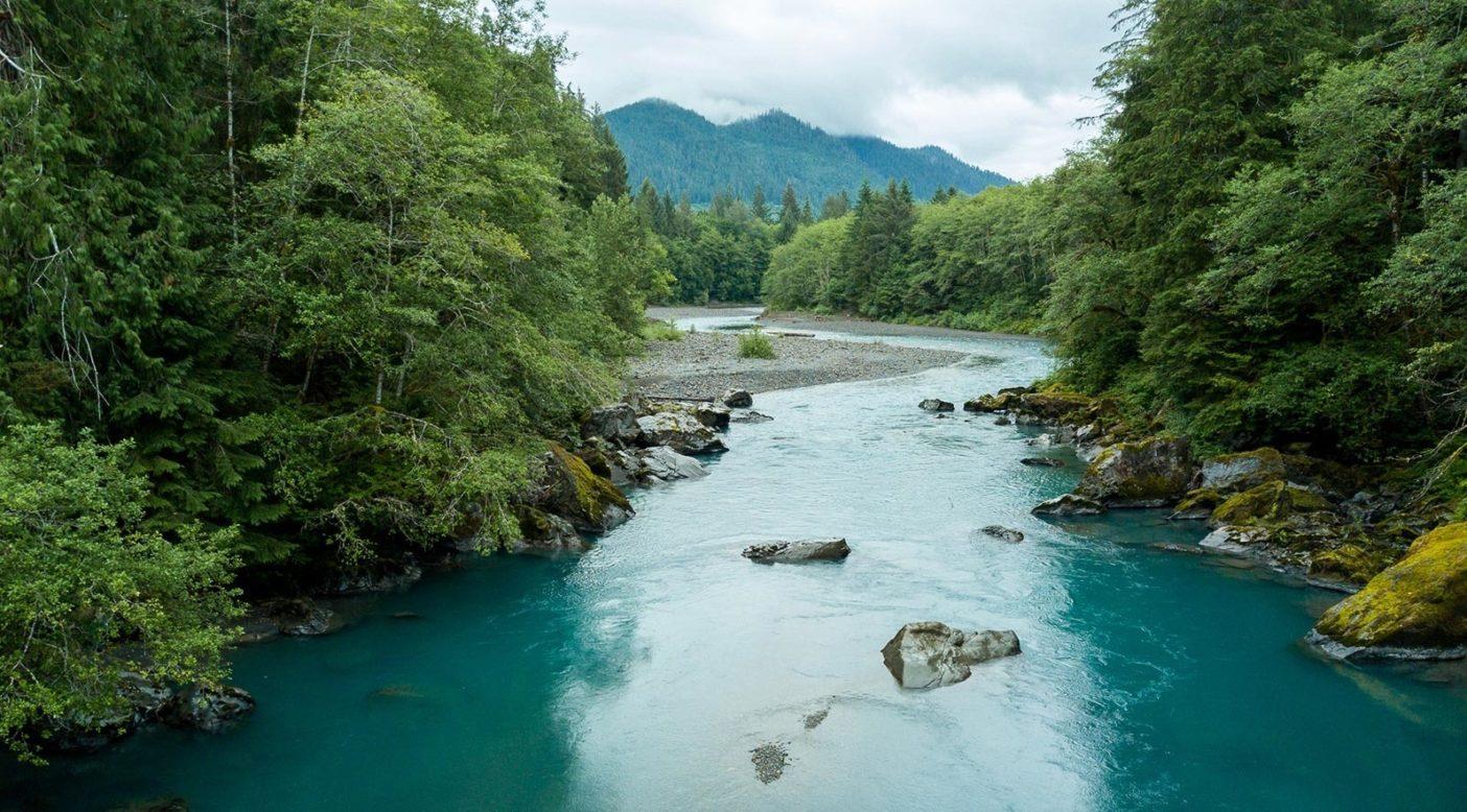 エルワ・リバーは20年ものあいだダムがなかった。その一方で、オリンパス山の山腹からオリンピック半島の西端の太平洋まで流れるホー・リバーは、その大部分がオリンピック国立公園内を流れるため、州内でも数少ない流れの途切れない川のひとつだ。Photo: Colin Wiseman