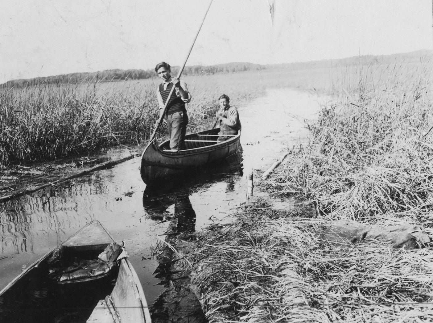 20世紀初頭から中期に、ミネソタ州の湖沼でワイルドライスを探す2人の男性。パイプライン建設に声高に反対する多くのアメリカ先住民族は、彼らにとって神聖な、そしてミネソタはその産地としてとくに有名な、ワイルドライスの水田のことを心配している。 Photo: Visual Studies Workshop/Getty Images