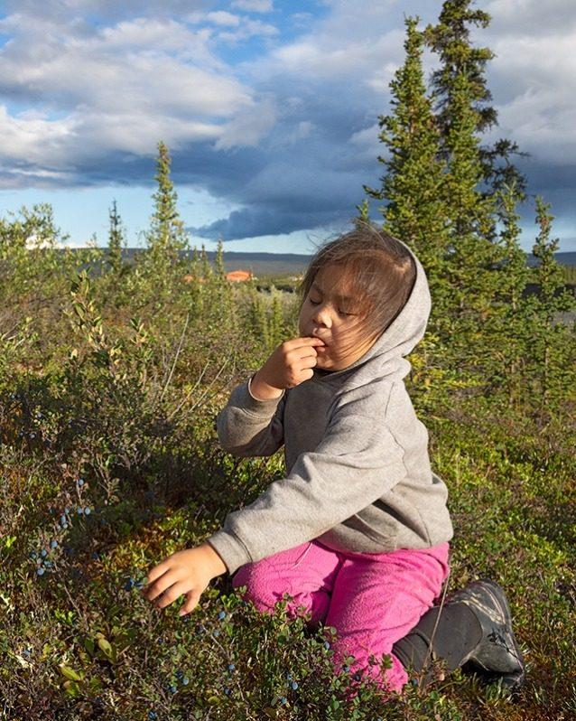 グウィッチン族の伝統であるベリーの摘み方を習いながら、ちょっと味見の休憩をとるアリアナ・ギルバート。Photo: Keri Oberly