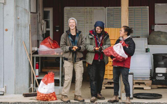 タマネギには泣かされるだけ、というのが誤解であることを証明する〈ロデール・インスティチュート〉のインターン、アヴァ・ソネット、デライラ・ミスケとトゥイ・トング。photo:Johnie Gall