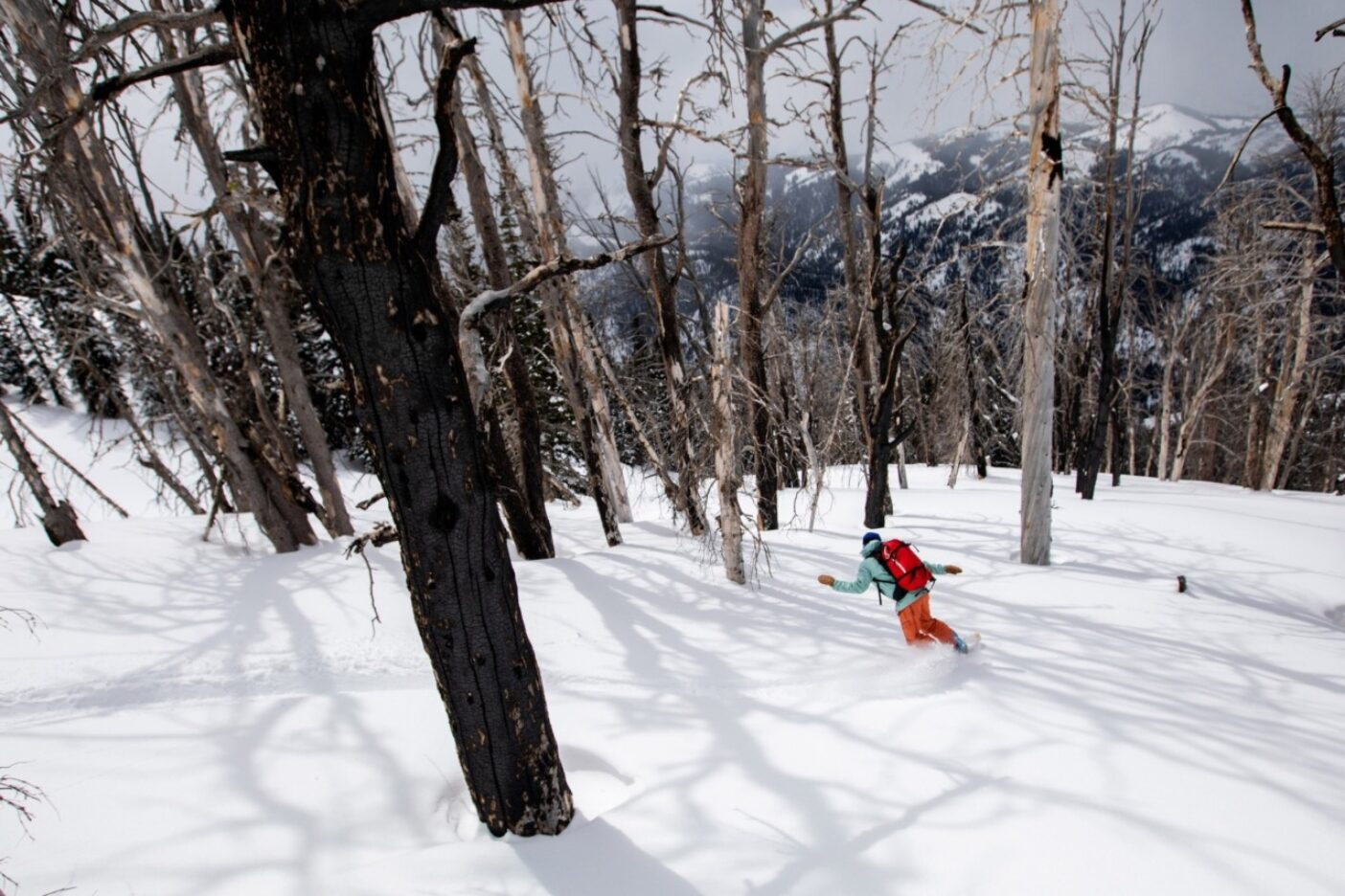 ワイオミング州ジャクソン近くの不気味な、でも美しい焼け跡を滑降するエミーレ・ズィノビア。写真:ソフィア・ジャラミロ