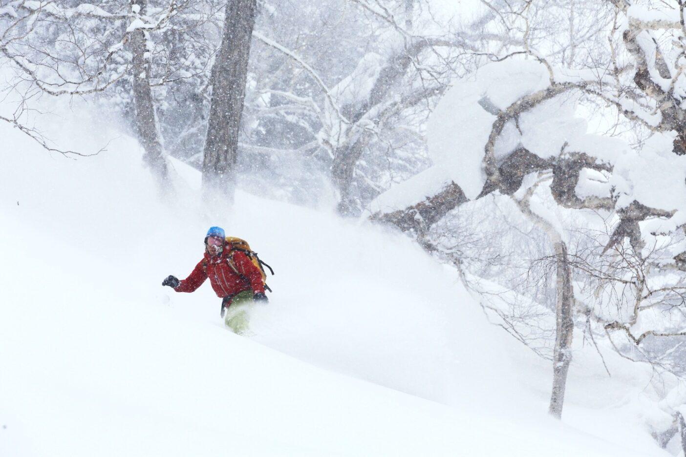 北大雪エリアの日常 写真:大塚伸