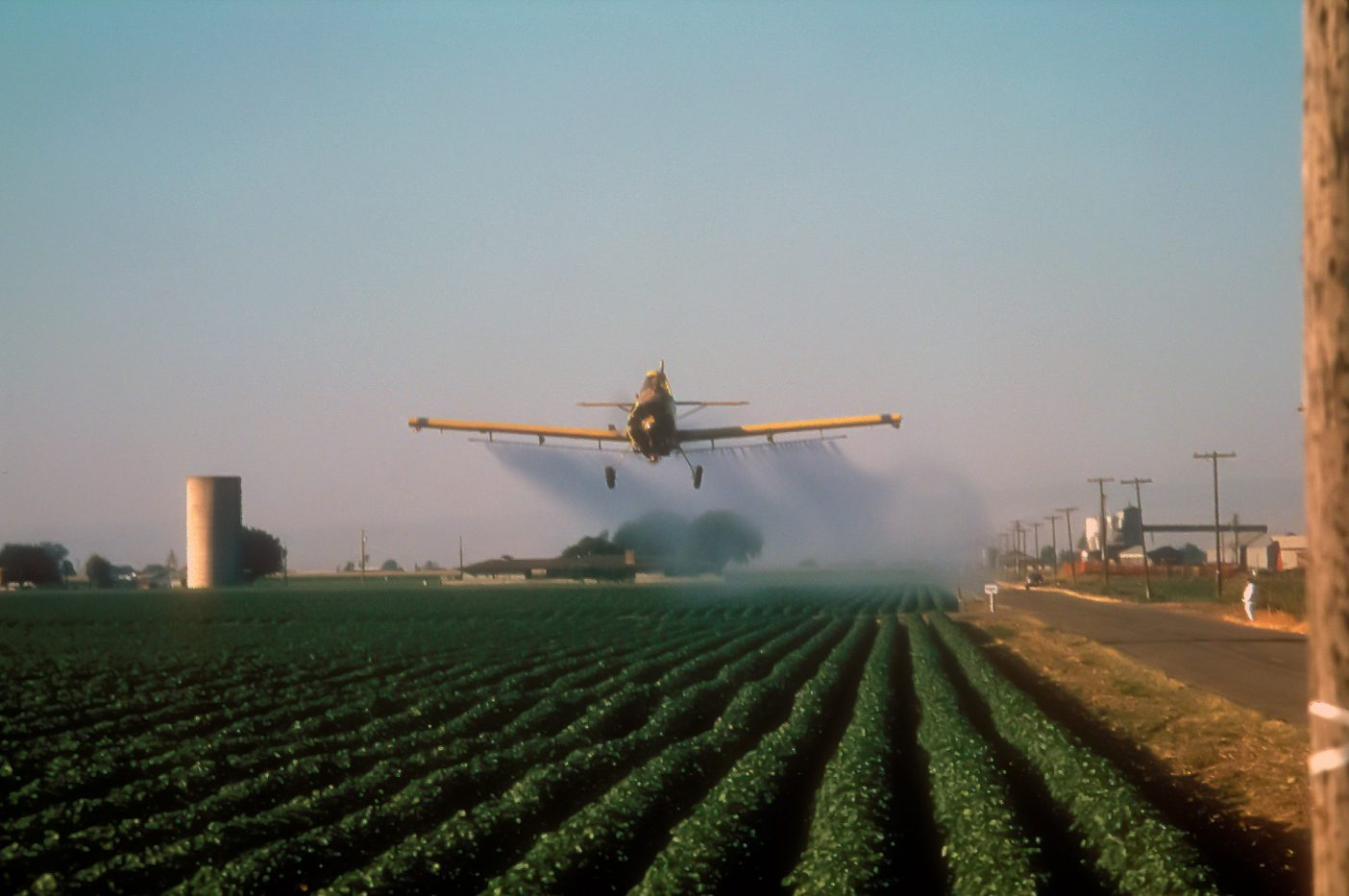 噴霧の際には殺虫剤の噴煙と滴が大気によって予期せぬ場所に降りかかる。一般的なコットン栽培においては、それは他の農家、水路あるいはトラック一杯の食物を意味する。カリフォルニア州セントラル・バレー Photo: Zack Griffin