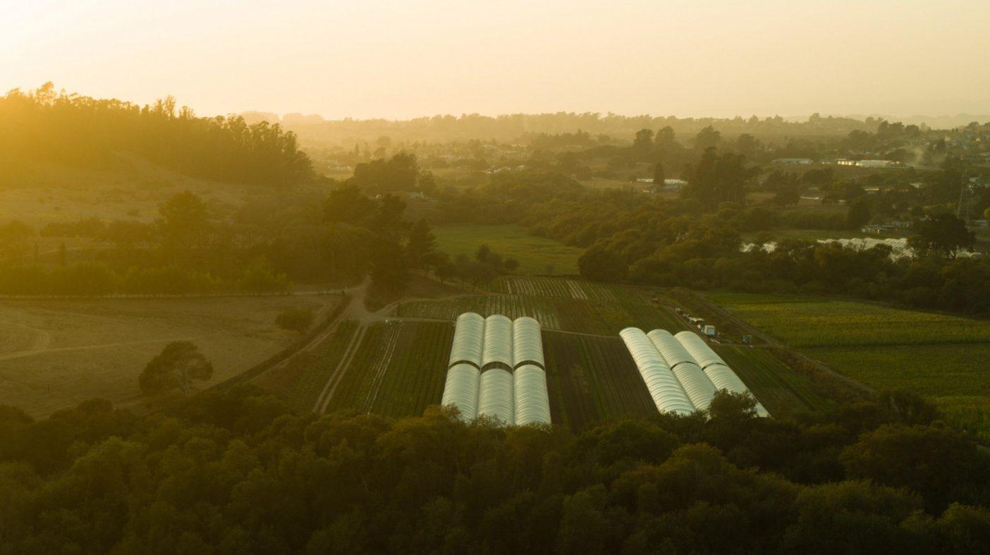 スタインベックの国あるいは世界のサラダボウルと呼ばれるカリフォルニアのサリナス・バレーは農業労働関係の焦点となってきた。