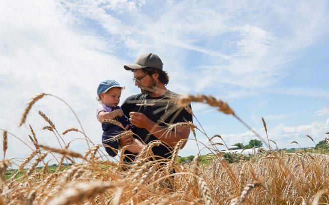 「メドウラーク・オーガニックス」のウィスコンシン農場で、ジョン・ウェプキングと娘は、小粒の穀物をチェックする。Photo: Jesse Perkins